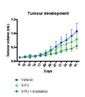 Combination therapy of tumors